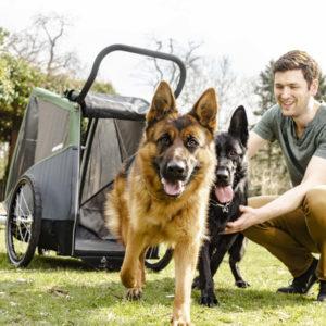 Croozer Dog XXL Dog Trailer pine green - Cykelvagnar för Hund